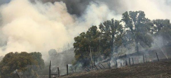 En California, miles de personas huyen de sus hogares por incendios forestales
