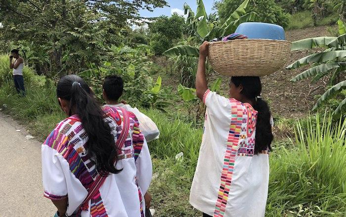 """Video: Los zoques, 2,500 años en Chiapas, frenan la Reforma Energética: """"No entrará. Ni ahora ni nunca"""""""