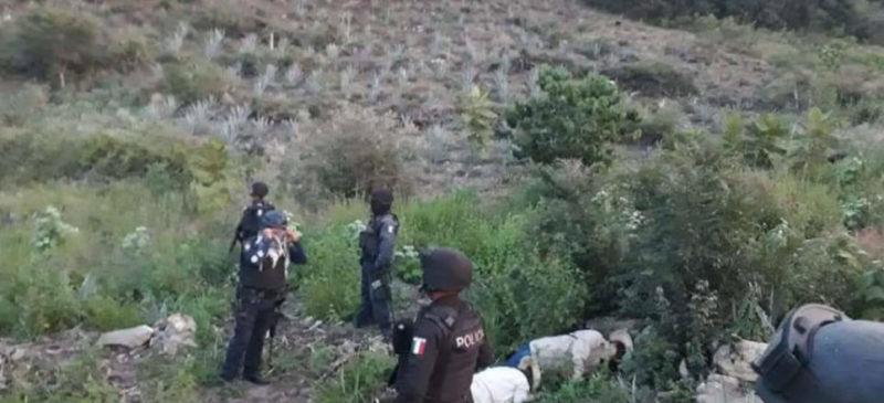 13 personas muertas en Oaxaca durante enfrentamiento por conflicto agrario