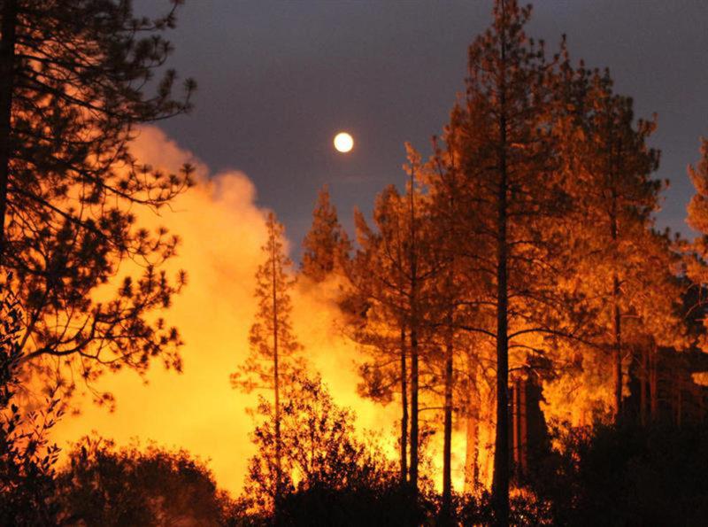 Incendios sin control: 5 muertos y 38 mil evacuados