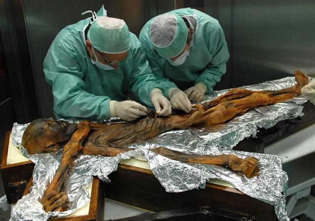 Otzi almorzó fuerte antes de morir, hace 5,300 años