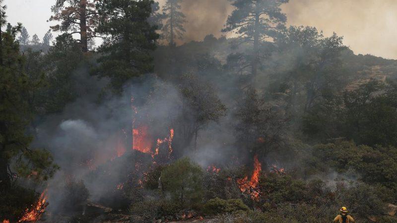 Muere un bombero que combatía el incendio Ferguson cerca del Parque Nacional Yosemite