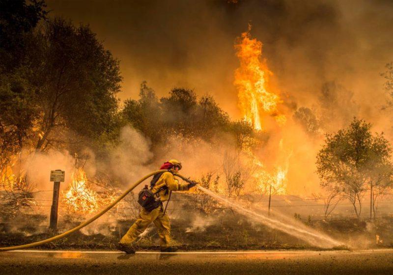 17 incendios forestales combatidos por 14 mil bomberos. Ya hay once fallecidos