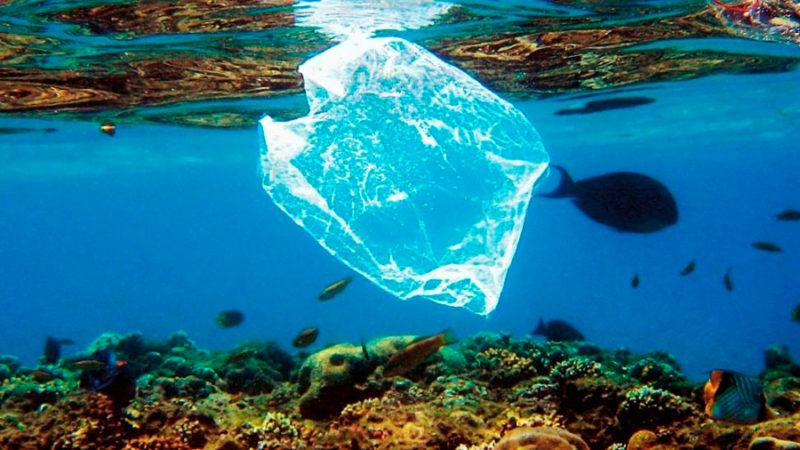 Científicos chinos desarrollan plástico que se degrada en el mar en unos cien días