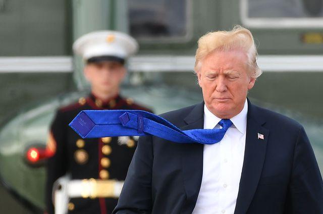 Trump estalla y exige la entrega del traidor que escribió en The New York Times