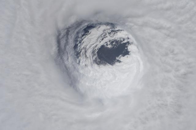Videos: Michael toca tierra en Florida con vientos de 250 km/. Es el más potente que afecta ese estado en 100 años