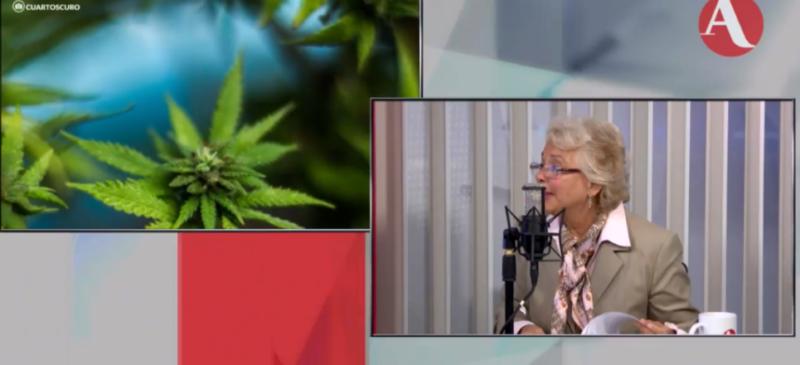 Videos: Avanza la regulación de la cannabis: una institución desconcentrada se encargaría de la producción, etiquetación, venta, y consumo: Sánchez Cordero