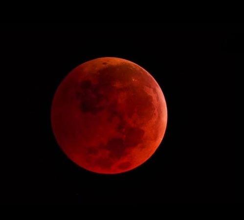Noche de eclipse lunar, superluna y luna de sangre (En vivo)
