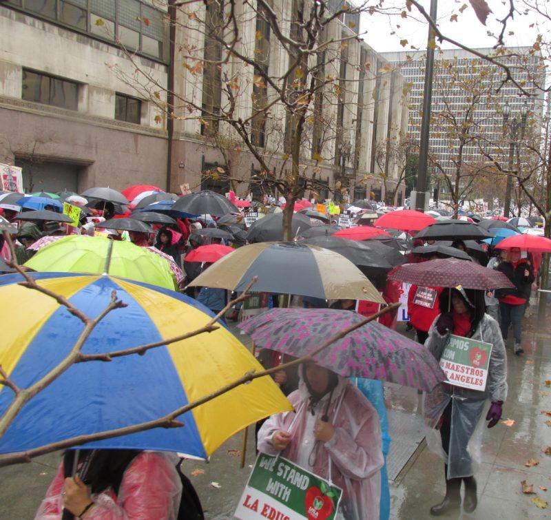 Videos: En el lluvioso primer día de huelga, los maestros irradían aplomo, muestran unidad y miles que marchan en el centro angelino destacan que su lucha es por la educación pública