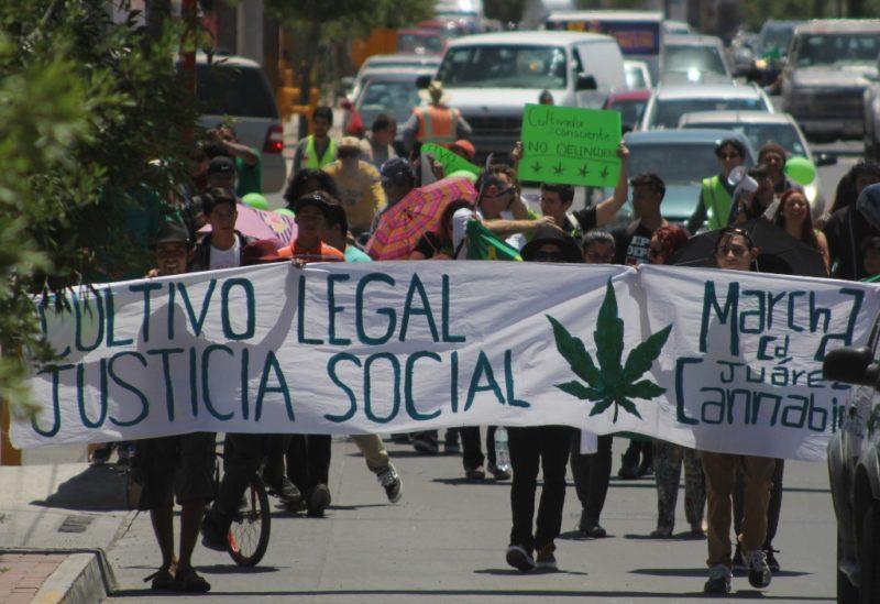 Decomisan cuatro toneladas de mariguana en la garita Otay Mesa