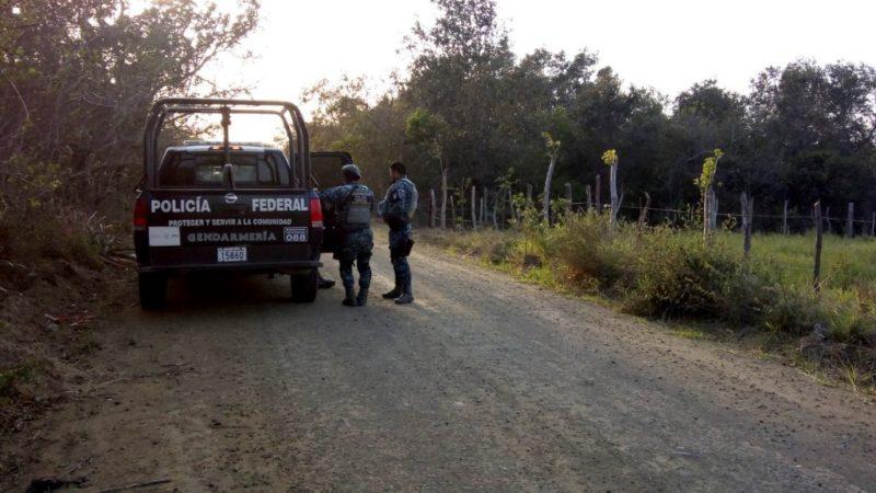 Siguen desaparecidos 22 migrantes centroamericanos en Tamaulipas; rescatan a 113