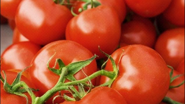 EU se brinca acuerdo e impone aranceles de 17.5% al tomate mexicano