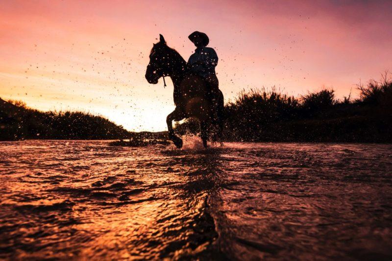 Nuevo documental explora vida silvestre de la frontera México-EU