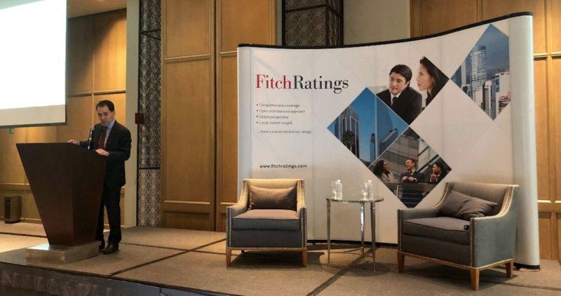 México tiene recursos suficientes para pasar una crisis económica, afirma Herrera en foro de Fitch