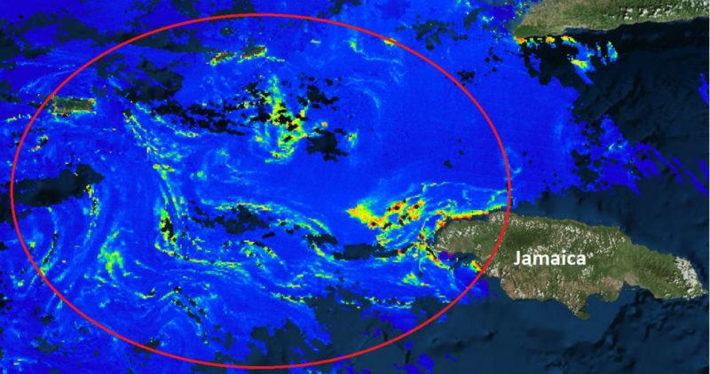 """Una """"mancha de sargazo"""" de 550 kilómetros va rumbo a playas de México, alerta Red de Monitoreo"""