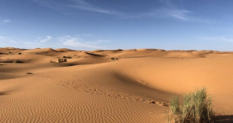 Radares alertan por masa de arena y polvo rojizo que llegará a Nuevo León y a Coahuila desde el Sahara