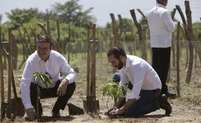 """El Salvador pone en marcha el programa de AMLO """"Sembrando Vida"""" y, junto con México, demanda a EU más recursos para Centroamérica"""