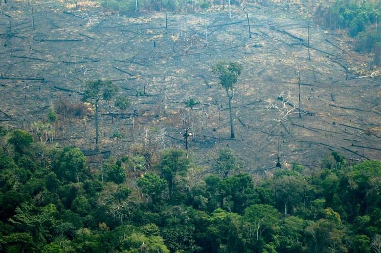 Evo Morales acepta ayuda internacional por incendios forestales; Bolivia y Brasil va a recibir ayuda del G7