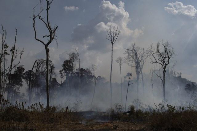 Videos: Pese a esfuerzos del Ejército, más de mil incendios nuevos en Brasil