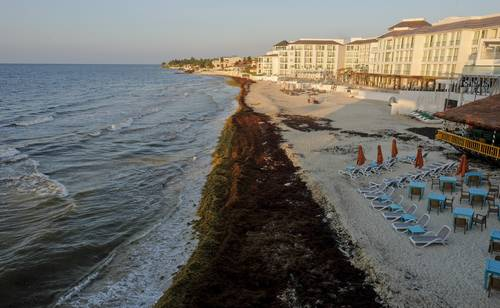 Se liberó de sargazo a Playa del Carmen y Cancún, dice Semar