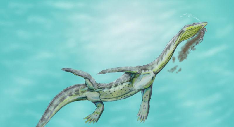 El asteroide caído en Yucatán, hace 65 millones de años,  acabó con los dinosaurios y acidificó los océanos