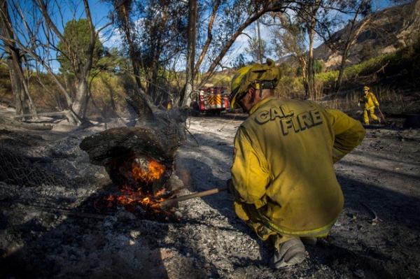 Amenaza Trump con recortar recursos contra incendios en California