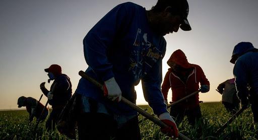 El gobernador Newsom declara el 28 de abril como Día de los Trabajadores