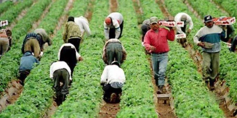 Ante Covid, EU declara como 'esenciales' a trabajadores migrantes