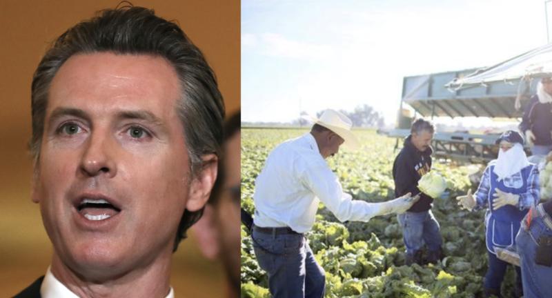Aumentan a 24 mil 371 los casos y 731 fallecimientos por covid-19 en California. Piden alcaldes apoyo a indocumentados