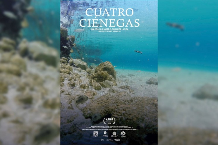Exhiben en línea 'Cuatro Ciénegas, una película sobre el origen de la vida'