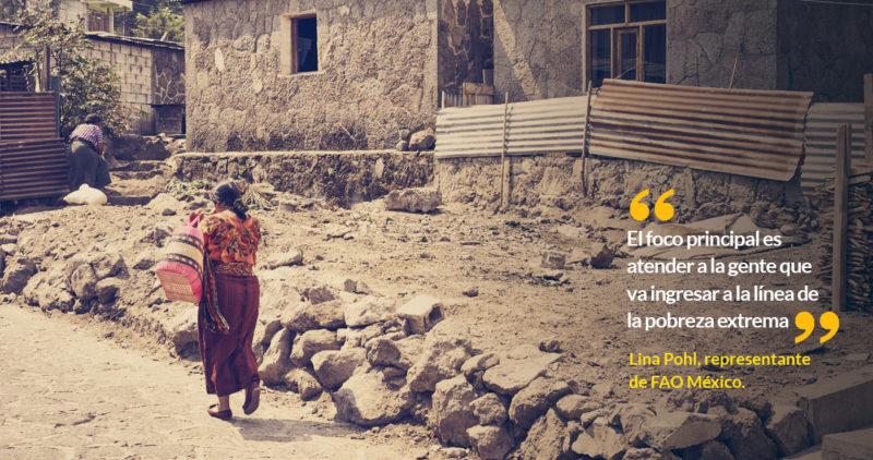México salvó empresas en 2008 y no a los pobres con hambre: FAO; en 2020 no debe repetirlo, dice