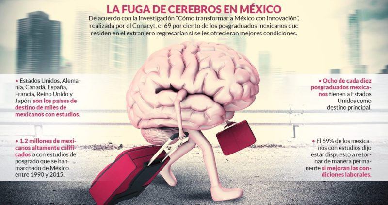 1.2 millones de mexicanos altamente calificados, algunos con posgrado, dejaron su país de 1990 al 2015