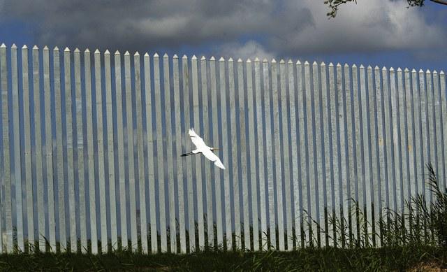 Suprema Corte de EU rechaza suspender construcción del muro fronterizo