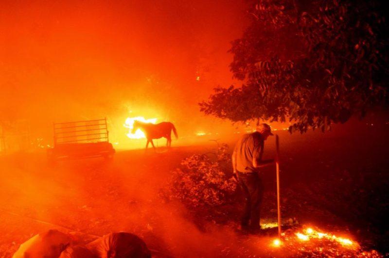 California registra más de 7 mil incendios en lo que va del año; han arrasado con cerca de 6 mil 70 kilómetros cuadrad