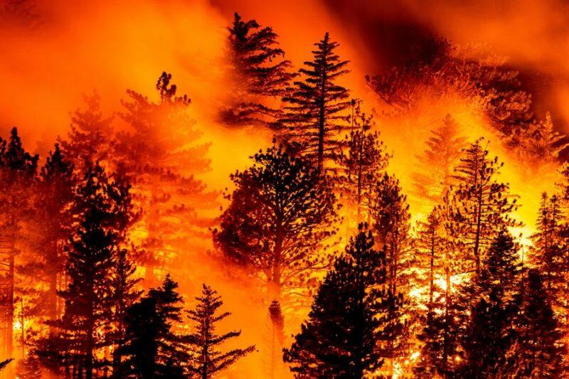 Video: Hay 37 incendios en California. Advierten sobre más devastación por falta de lluivas. Al menos 35 fallecidos por las llamas en la costa Oeste