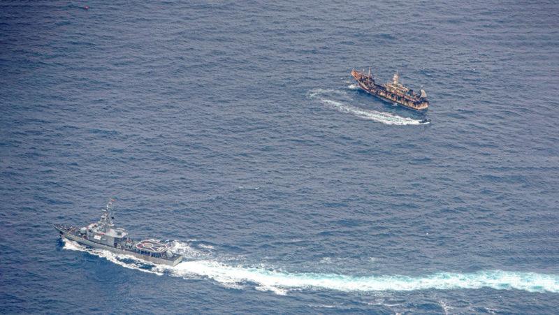 340 barcos extranjeros en busca de calamar gigante cerca de las Galápagos