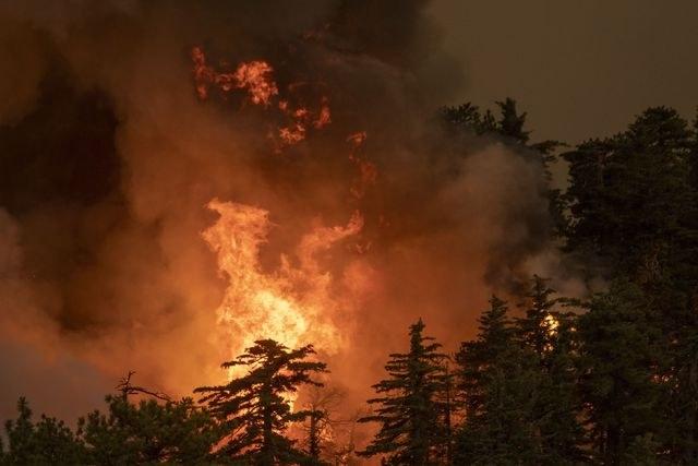 Video: Ya son 16 los muertos por incendios: 12 en California, tres en Oregon y una en Washington