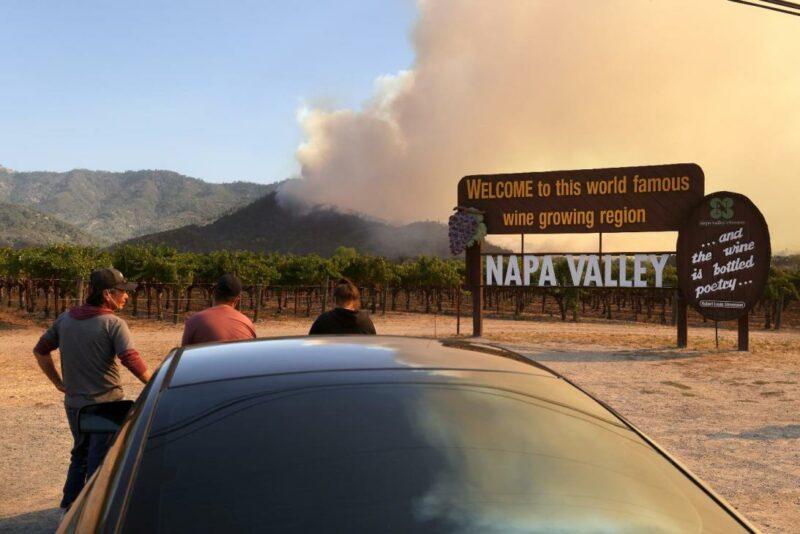 Viñedos emblemáticos reducidos a cenizas: así es la destrucción que ha dejado el incendio en Napa y Sonoma