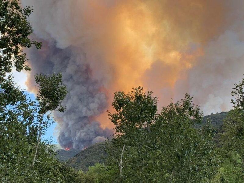 Una fiesta de revelación de género causó un incendio en más de 14 mil acres y amenaza acon destruir 11 mil estructuras. Severos cargos a responsables