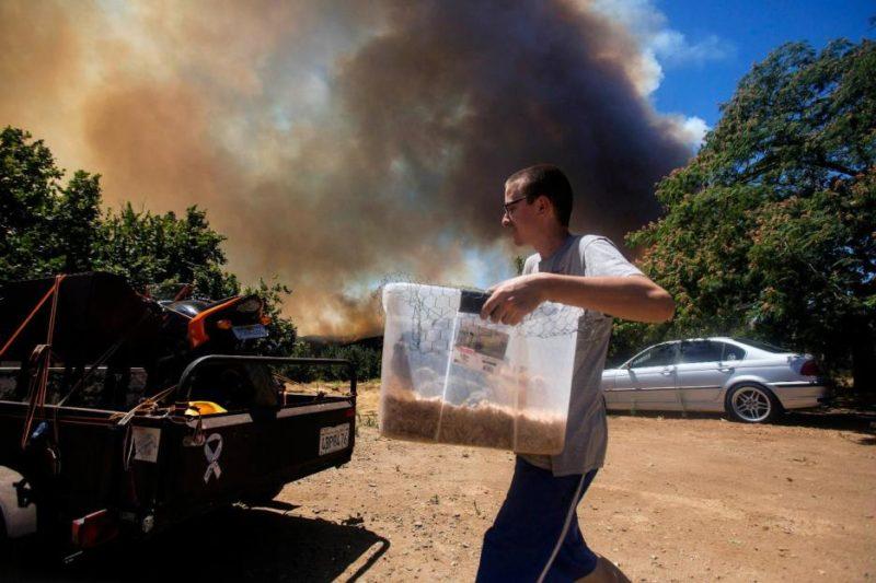 California vive la peor temporada de incendios de su historia y Newsom culpa al cambio climático