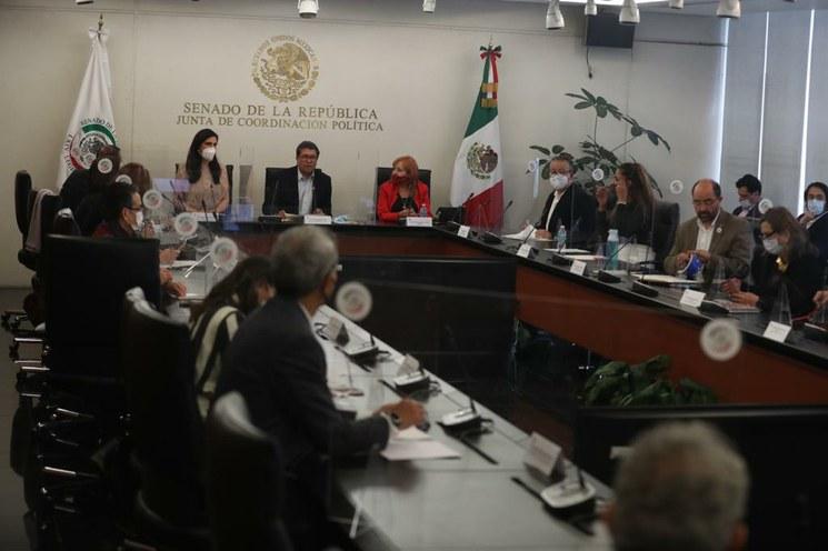 Ríspida reunión entre Rosario Piedra, titular de la CNDH, y senadores