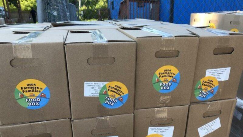 A la basura, carta de Trump en cajas de comida en el distrito escolar de San Diego por información y sugerencias sobre COVID-19 atentatorias de normas sanitarias