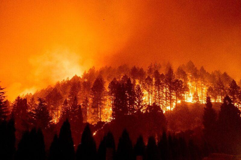 """Trump declara el """"estado de desastre"""" en California por incendios"""