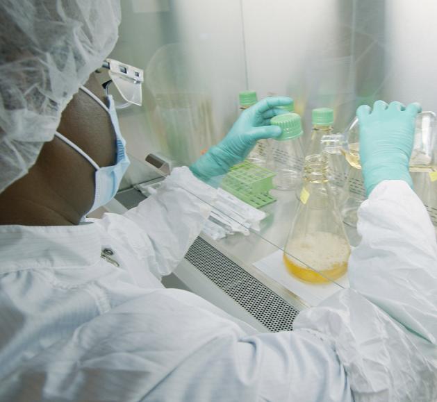 Las vacunas para la COVID-19 no serán 100% efectivas; podrían llegar hasta mediados del 2021: OMS