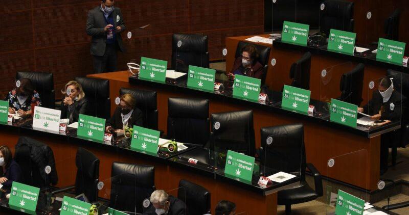 El Senado hace historia: Aprueba la regulación integral del uso lúdico y cultivo de mariguana