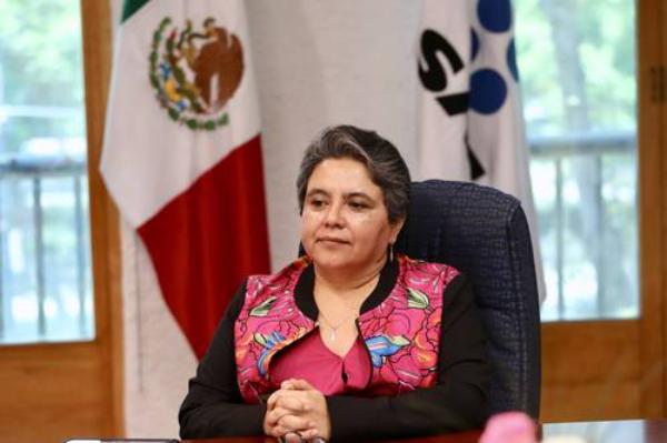Mexicanos Contra la Corrupción, en evasión fiscal: SAT. El grupo fundado por Claudio X. González usa tácticas defactureras