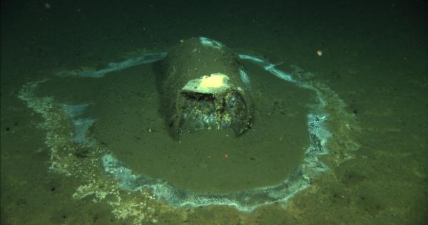 Científicos hallan 25 mil barriles de DDT en el mar, frente a Los Ángeles y la isla Santa Catalina