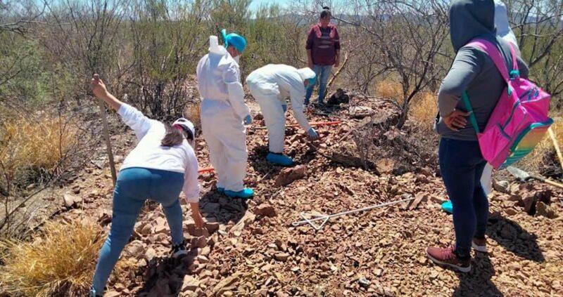 Video; 400 cuerpos y 132 personas vivas han localizado las Madres Buscadoras de Sonora en dos años