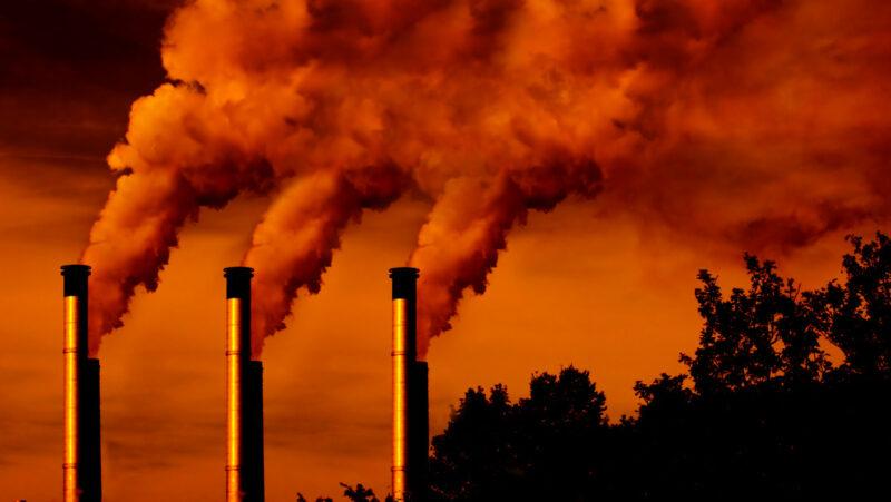 """Los signos vitales de la Tierra empeoran a un ritmo """"preocupante"""", afirman 13,800 científicos de 153 países"""
