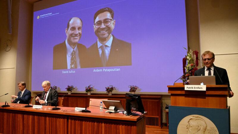 El Nobel de Medicina, a los estadounidenses David Julius y Ardem Patapoutian